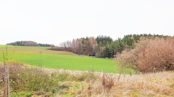 Eigene Feldern und Wiesen