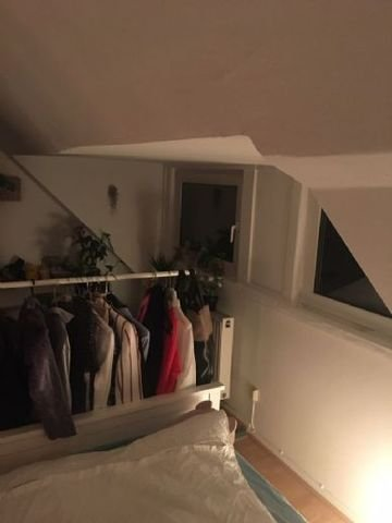 Zimmer VI.3