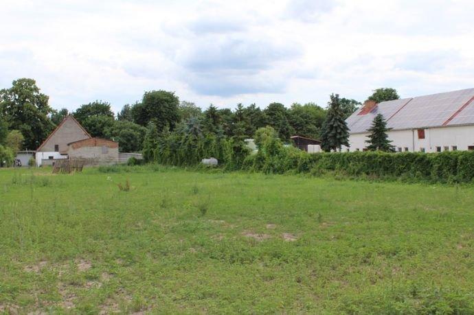 Grundstück mit 5 Flurstücke