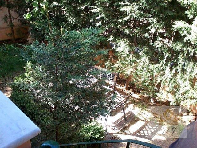Teilblick in den Garten 1