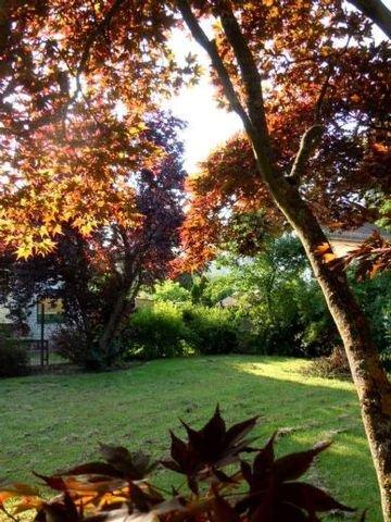 Nordwestecke Garten