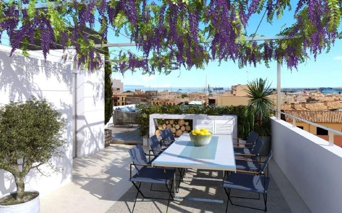 new-built-apartment-in-santa-catalina-7