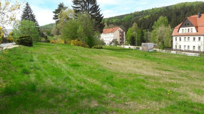 Bauplatz der 5 Baufelder