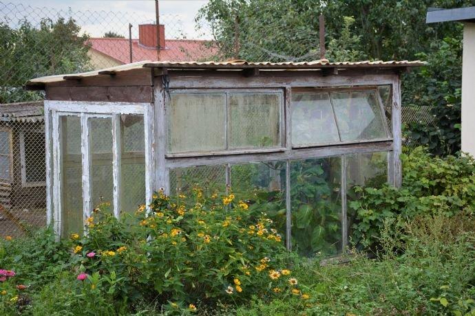kleines nostalgisches Gewächshaus