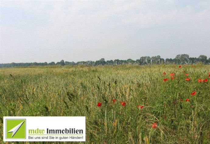 Ackerland MDW-Immobilien