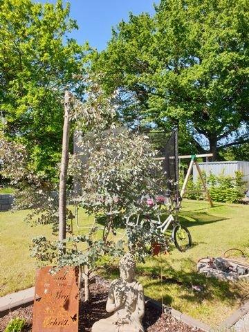 Garten und Terrassen in ruhiger Wohnlage
