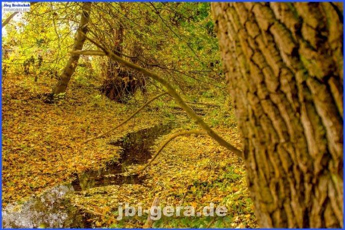 Kleiner Bach am Grundstück