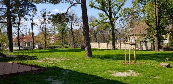 Gartenbereich im Schlosspark