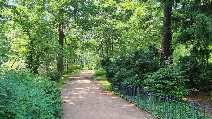 Waldpark Blasewitz (Umgebung)