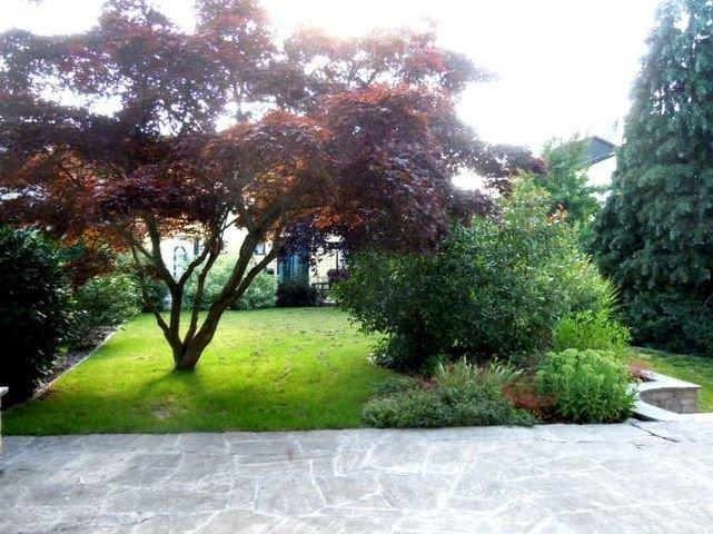 Garten vor Wohnzimmer-Terrasse
