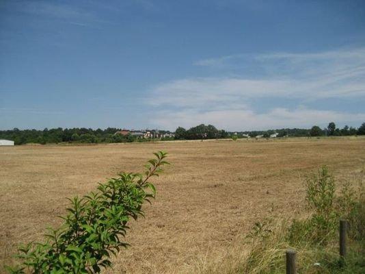 Blick vom Grundstück in Richtung Wertheim Village