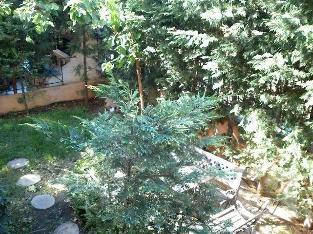 Teilblick in den Garten