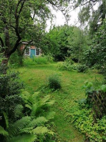 Garteneinblick