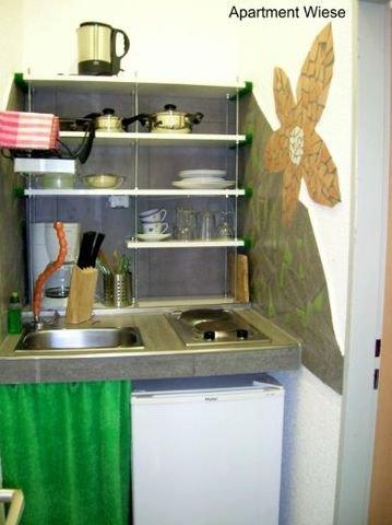 Apartment Wiese, Küche