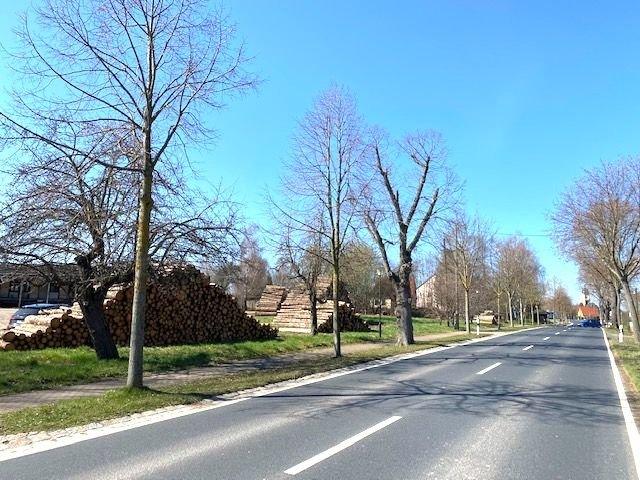 Anliegerstr. in Richtung Limbach