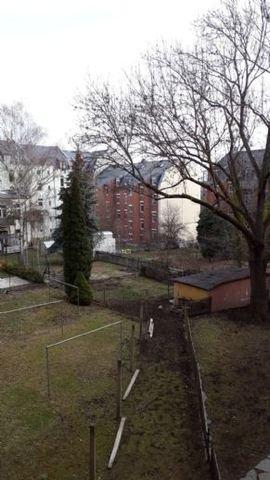 Garten Winter (4)