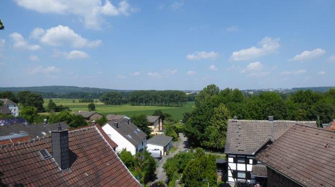 Ausblick Ruhrwiesen