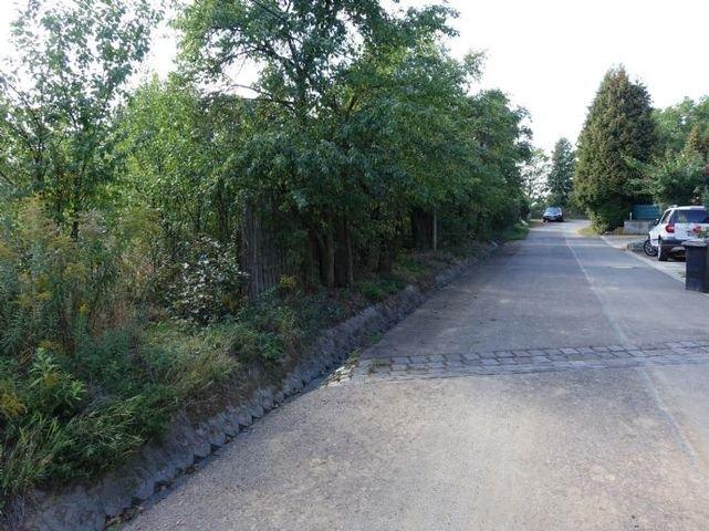 Asphaltierte Straßenanbindung