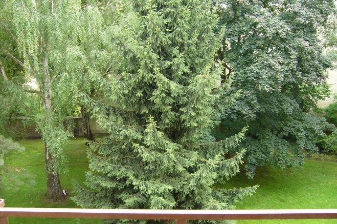 09-Blick vom Balkon