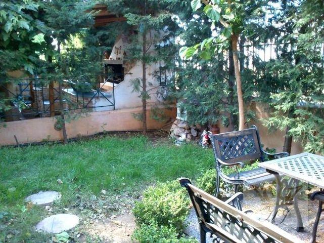 Teilblick in den Garten 3