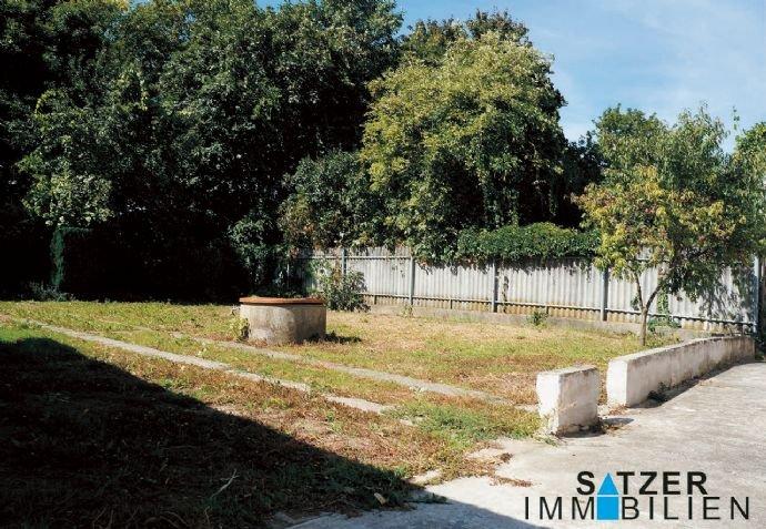 große freie Fläche im Garten
