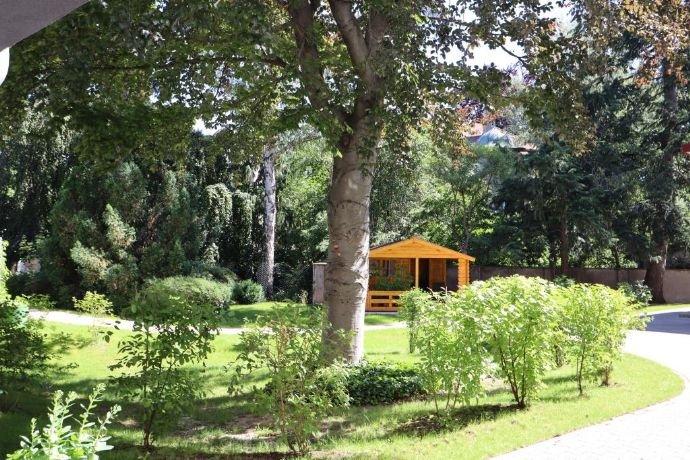 Gartenbereich (2)