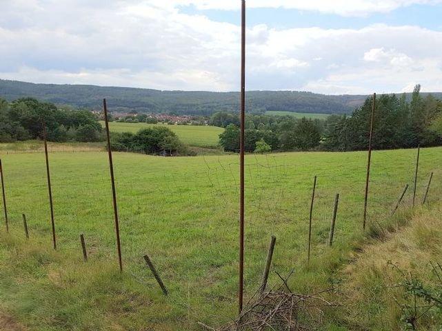 Landwirtschaftliche Fläche mit Weitblick