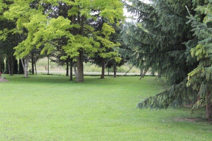 Ansicht Gartenbereich